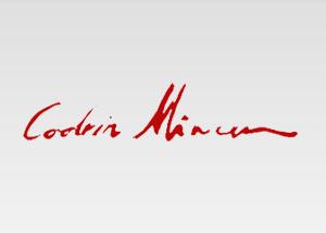 codrin-mircea